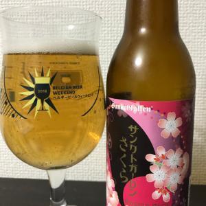 No.892 サンクトガーレン さくら(★4 桜の葉の香りがする和風なビール。)