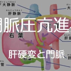 「門脈圧亢進症」肝硬変の合併症について