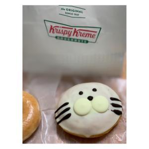 #krispykremedoughnuts #クリスピークリームドーナツ #sealcustard #アザラシカスタード #259円 #期間限定