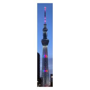 #tokyoolympics #東京オリンピック  #tokyo2020 #olympics #olympic  #東京オリンピック2020  #スカイツリー #skytree  #新幹線