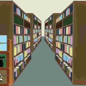 埋もれてしまった本たち