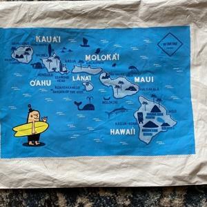 サポートHawaii