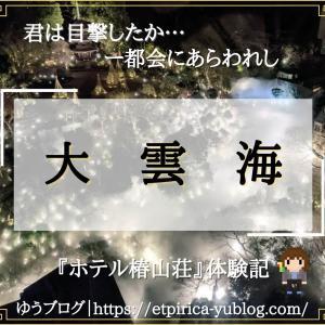 【ホテル椿山荘東京】摩天楼に浮かぶ『大雲海』に圧倒された話【体験記】