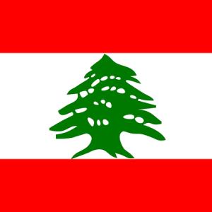 【BTC】価格上昇の起爆剤に?レバノン通貨急落&デフォルトが発端か?