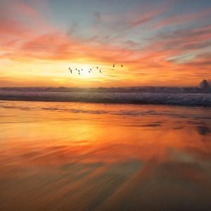綺麗な海を見ながら癒される音楽を聞いてリラックスしましょうね!