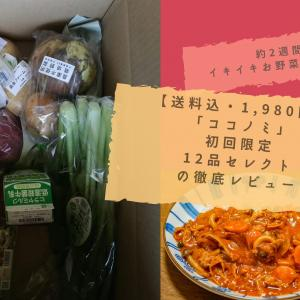 【送料込・1,980円】無農薬野菜「ココノミ」初回限定・12品セレクトの徹底レビュー