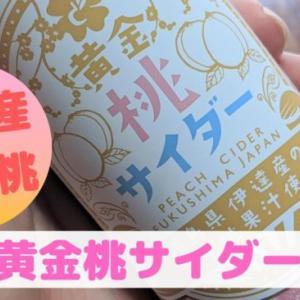 【炭酸】ふくしま未来伊達の黄金桃サイダーをレビュー!