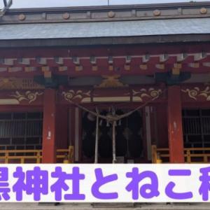 【参謀ふりぃ参戦】福島市の神社|羽黒神社とねこ稲荷をレビュー!