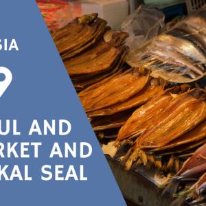 バイカル湖博物館と市場