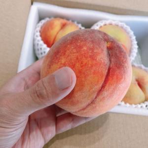 【優待レビュー】パイオラックスから黄金桃(カタログの選択商品)が届きました。