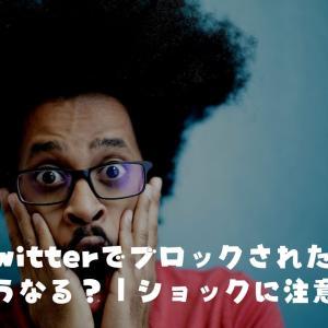 Twitterでブロックされたらどうなる?|ショックに注意!