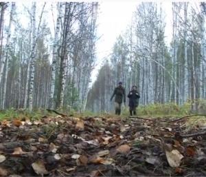 世界最大の湿原・シベリアのワシュガン