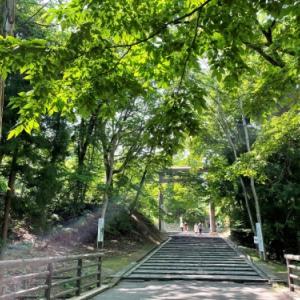 お散歩と参拝と森林浴