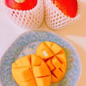 ☆歯列矯正☆矯正中のデザート【マンゴー】