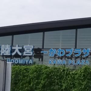 Go to travelキャンペーンで茨城の美味しい物みつけたよ~♪
