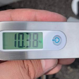 れいるくん(RAIL700)の身体測定