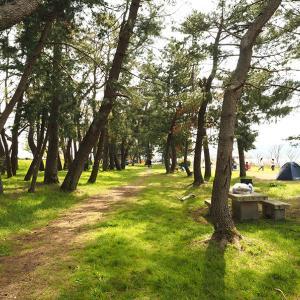 【琵琶湖でキャンプ無料】吉川【湖岸緑地シリーズ2】