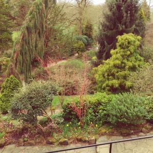 『マンチェスターの公園』1位に輝くフレッチャーモス植物園の実状