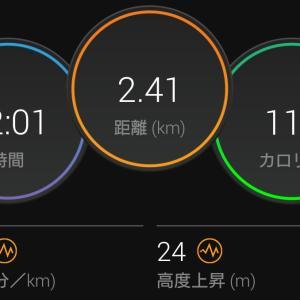 スピードを求めると…。残念5km走。