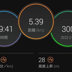 5km走 & 東京マラソン & 自分の近況
