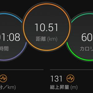 やっとノンストップで10km走。