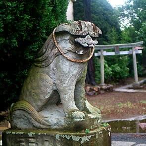 二宮神社の狛犬