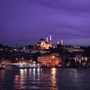 ウイグル人権法案成立ートルコの対中国戦略の変遷