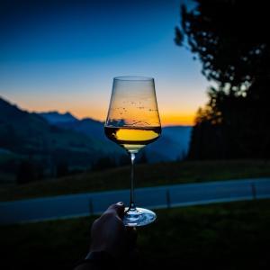 豪州ワインに高関税を課した中国に対する欧州の視線