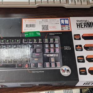 ワイ、とうとうゲーミングキーボードを購入