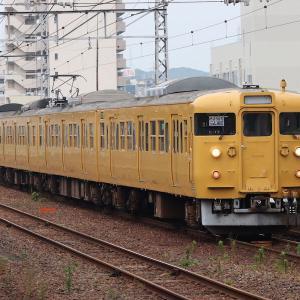広島の115系 最後の廃車回送を死ぬ気で撮影する