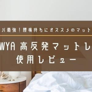 【レビュー】LOWYA(ロウヤ)高反発折りたたみマットレス(シングル)で腰痛改善!