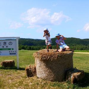 短い北海道の夏の暑さ、本州と比べて大したことなくてもバテバテ💦