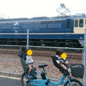 鉄道マニアとデイトレ収支