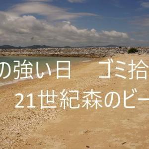 風の強い日のゴミ拾い 21世紀森のビーチ