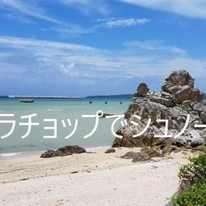 ゴリラチョップでシュノーケル とランチ事情 沖縄県本部町