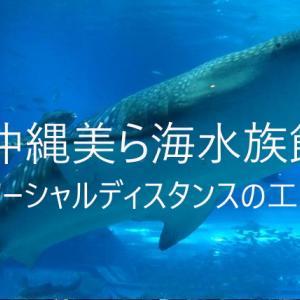 美ら海水族館が6月1日に再開、美ら海のソーシャルディスタンスがかわいかったので紹介!