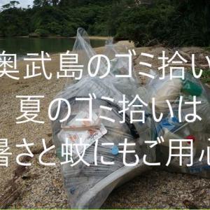 7月4日奥武島(おうじま)でゴミ拾い 暑さにまして、蚊の対策が必要と感じました