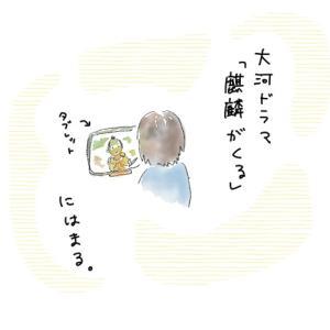 大河ドラマ「麒麟がくる」にはまる