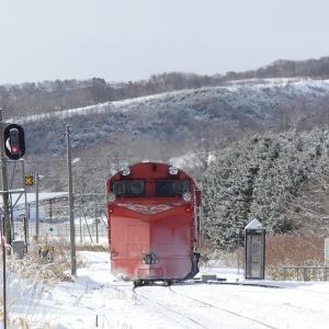 3日目その3 抜海駅から抜海港へ歩く 越冬中のゴマフアザラシを見物 ★冬のきた北海道フリーパスの旅