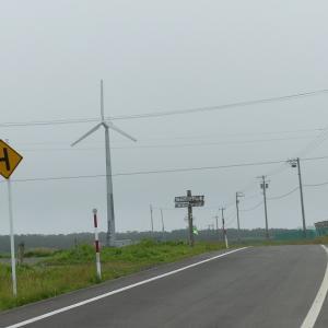 5日目その2 海霧の落石岬とエゾシカ ★ひがし北海道フリーパスで行くGoto道東の旅