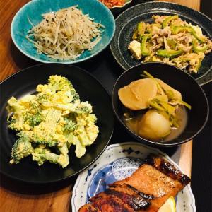 ゴーヤチャンプルー、焼き魚、ブロッコリータルタルとかで晩酌。