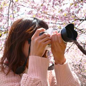 カメラ初心者 入門は「構図」を知ろう。