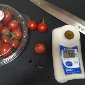 自分で栽培したミニトマトVS市販の高糖度ミニトマトの糖度計測【まとめ】