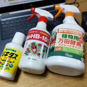 【葉面散布】野菜の元気が無い時は活力液で栄養補給!液体肥料との違いをやさしく解説♬