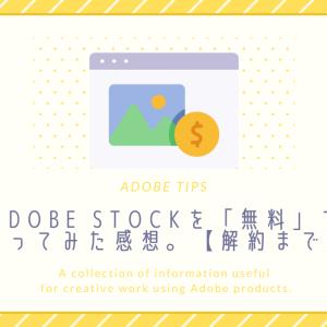 Adobe Stockを「無料」で使ってみた感想。【解約まで】