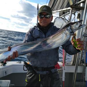 11月24日3号艇太刀魚