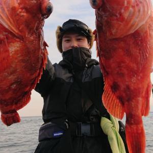 1月11日2号艇 青物&根魚‼️
