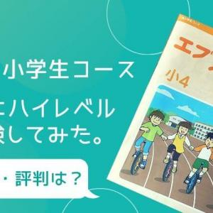 【Z会小学生の口コミ・評判】ハイレベルとスタンダードの選び方