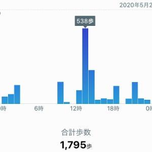 雨でステイホーム、1,795歩、休養日