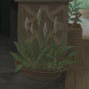 研究室を描く ~床の大きな鉢植えと籠を描く~